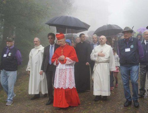 Pellegrinaggio del mondo del lavoro – Meditazione dei Misteri del Santo Rosario